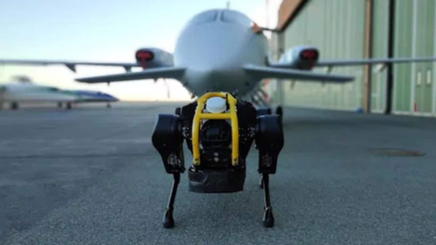 University students develop robo-dog that can haul 3-ton plane