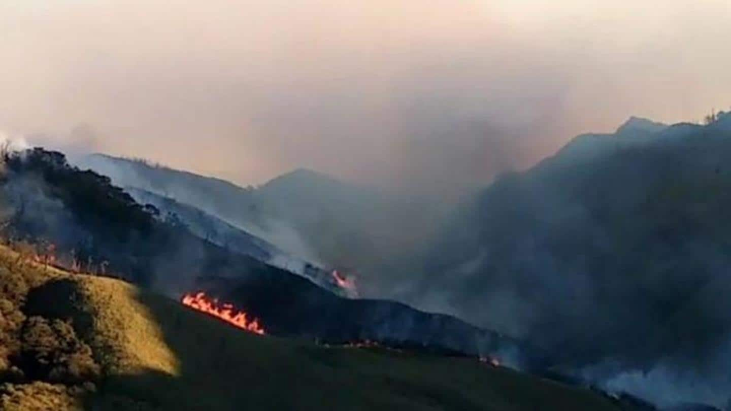 Forest fire in Dzukou Range of Nagaland under control: Officials